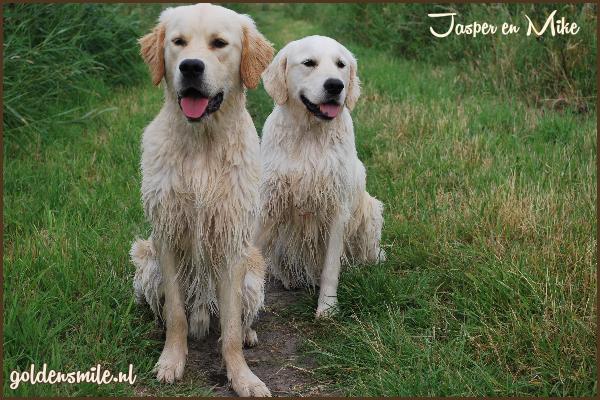 Jasper en Mike