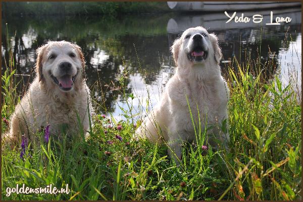 yeda & lana1